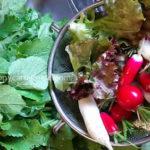 アトピーに酵素が多い食べものをおすすめする理由